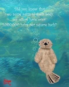 Sea Otter Hair